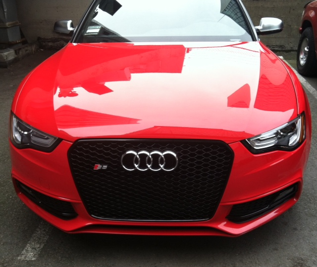 Best Grille Choice For A Misano Red S4